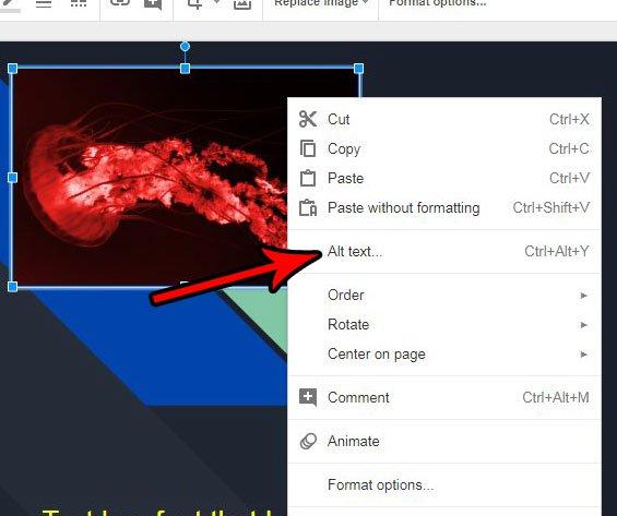 как установить картинку и текст в слайдах Google