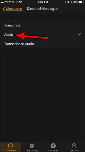 Как отправлять продиктованные сообщения в виде аудио на Apple Watch