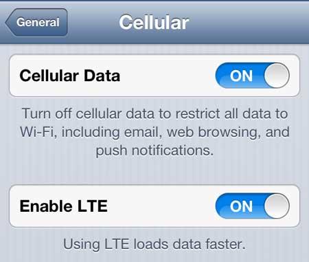 включите опцию enable lte