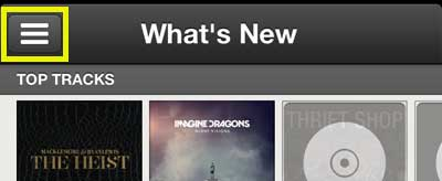 откройте меню Spotify