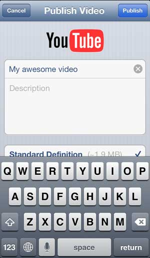 введите информацию о видео, затем нажмите кнопку публикации