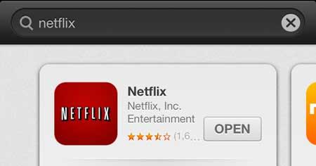 откройте установленное приложение netflix