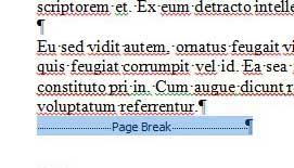 выбор объекта разрыва страницы
